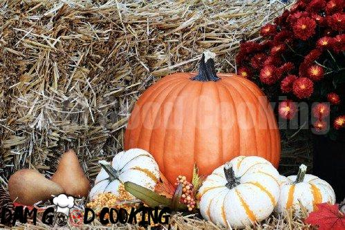 12. Pumpkins - 25 Foods You Can Re-Grow Yourself from Kitchen Scraps